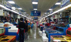 チャガルチ 魚市場